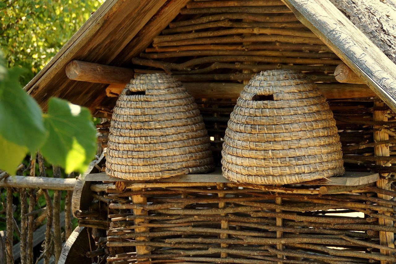 beehive-578191_1280
