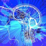 Neurowissen und Hypnosystemik für Mediator*innen